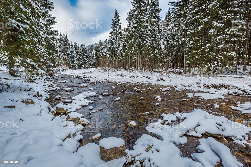 Mountain stream in winter, Tatra Mountains, Poland stock photo