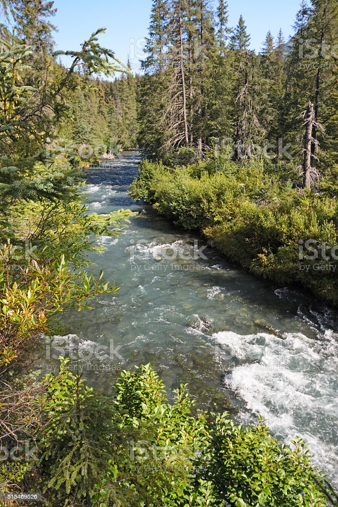 Mountain Stream on a Sunny Day stock photo