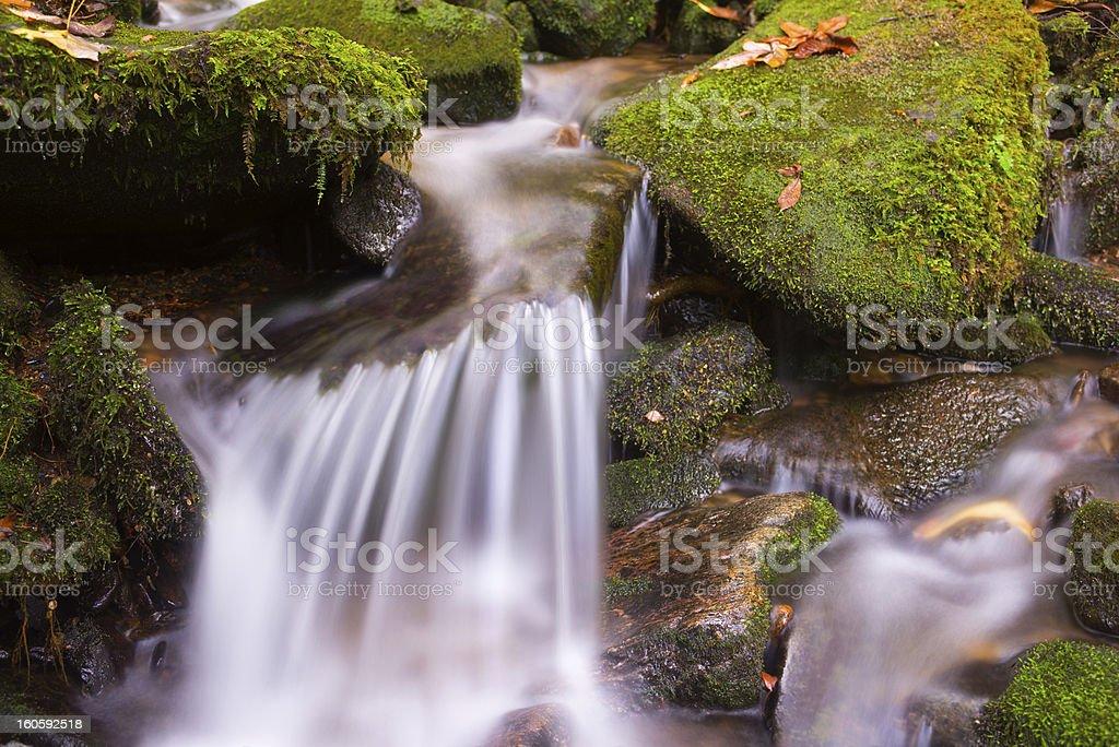 Mountain stream royalty-free stock photo