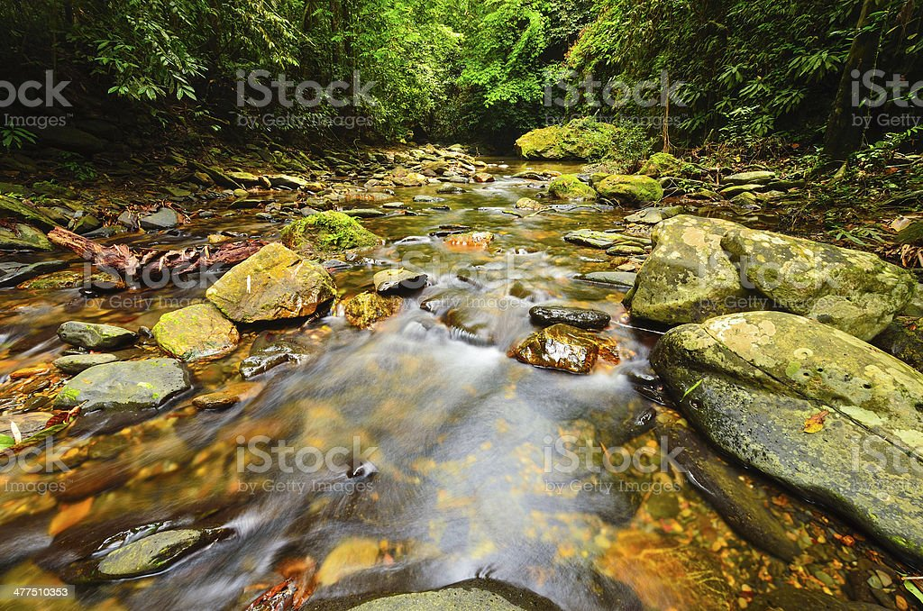 Moutain stream royalty-free stock photo