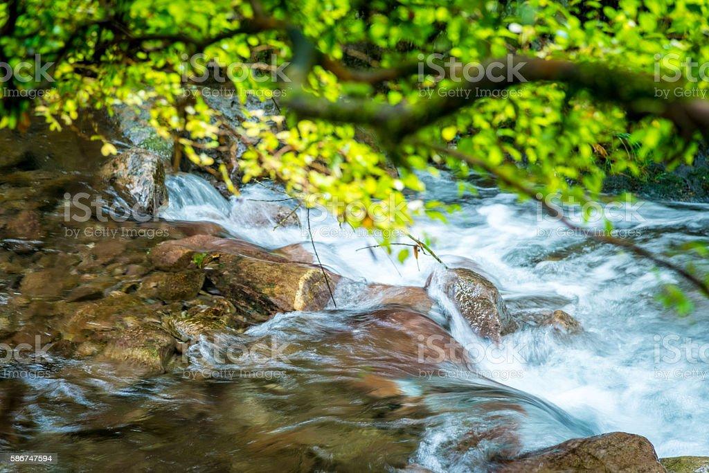 Mountain stream stock photo