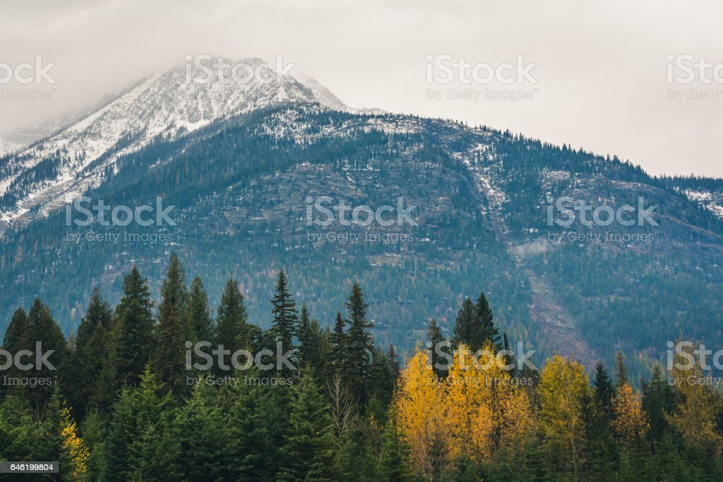 Mountain surrounded by autumn forest. stock photo