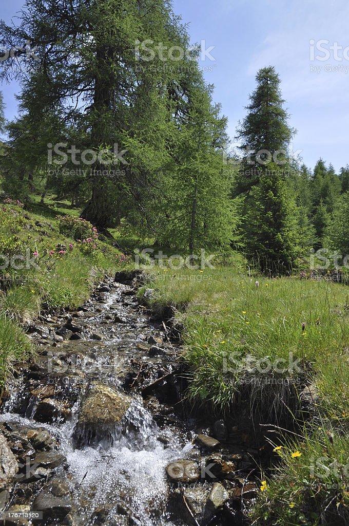 Mountain torrent stock photo