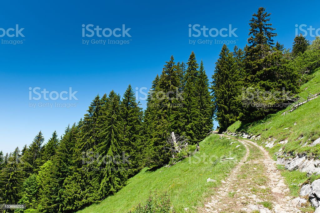 Mountain trail in Alps under blue sky. Chamonix valley, France. royalty-free stock photo