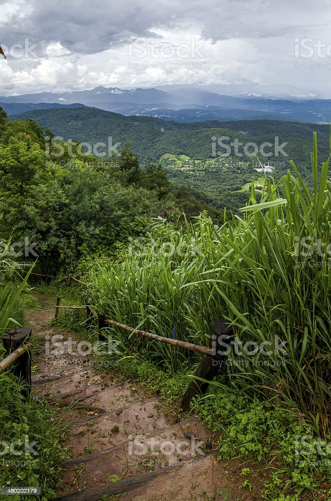 Mountain trail in Thailand royalty-free stock photo