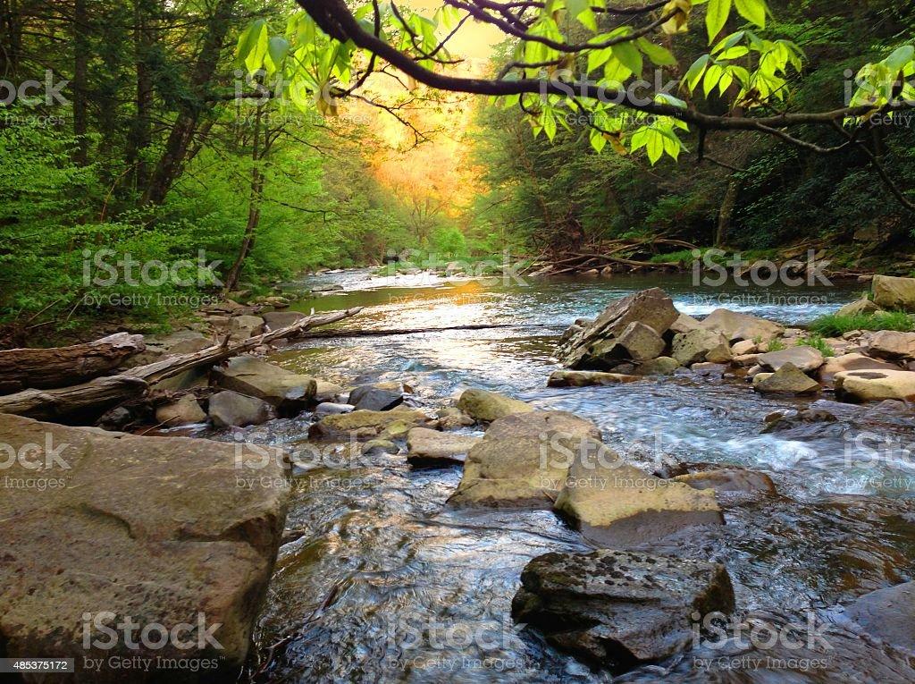 Mountain Trout Stream in Pennsylvania stock photo
