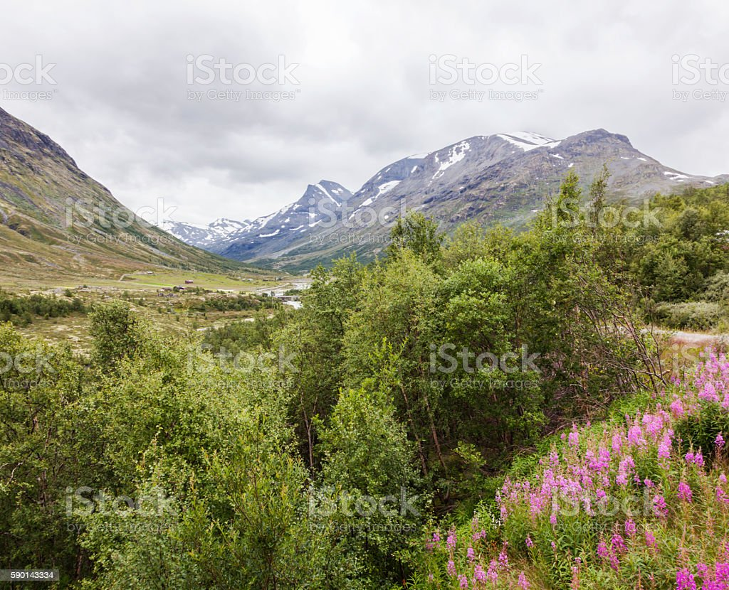 Mountain valley in August with some snow on the peaks. stock photo