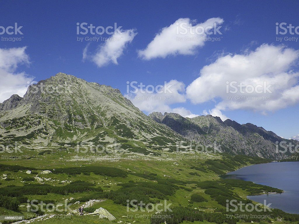 Mountain valley in summer, Europe, Poland royalty-free stock photo