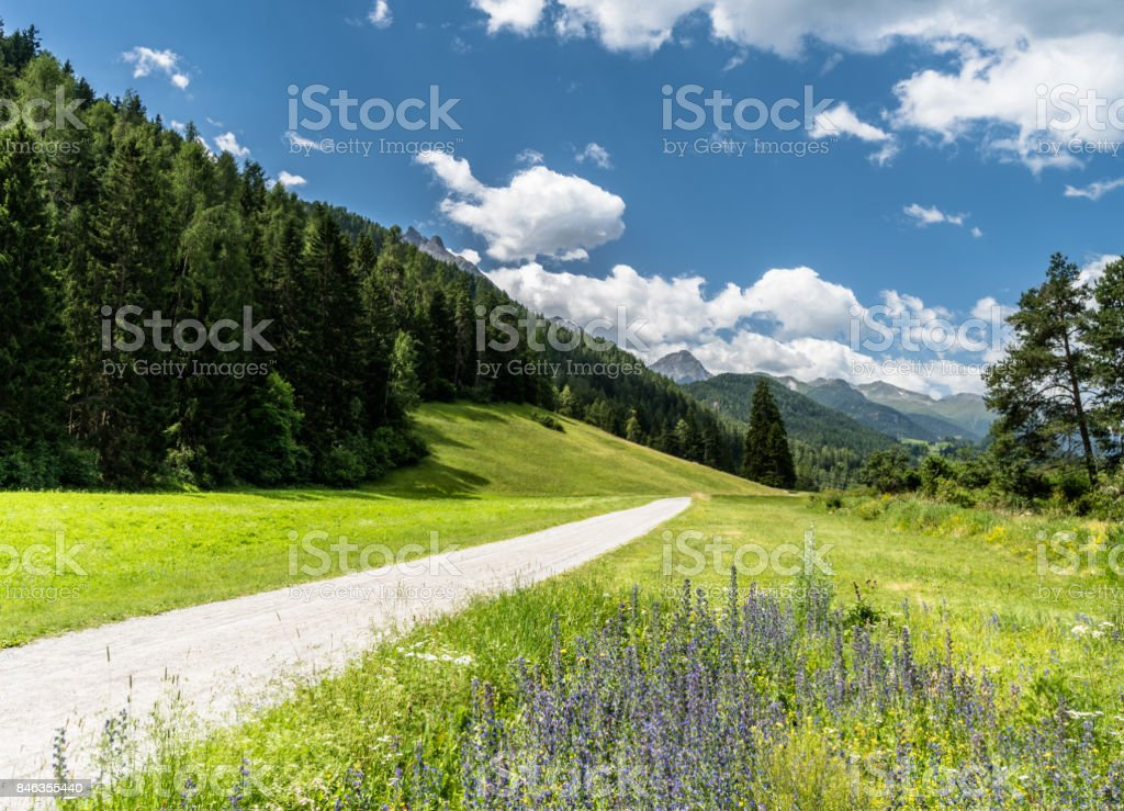 mountain valley with gravel road in the Swiss  Alps stock photo