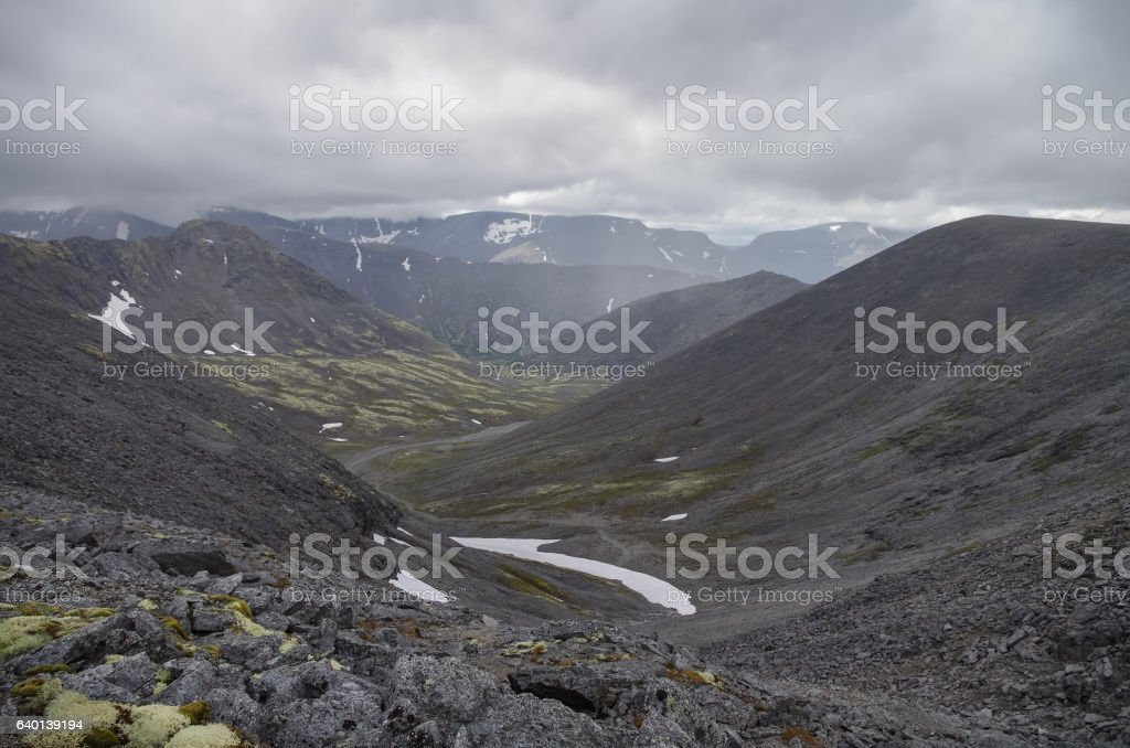Mountain valley with mosses and rocks covered with lichens. stock photo