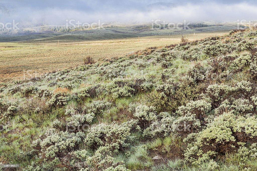 mountain valley with sagebrush stock photo