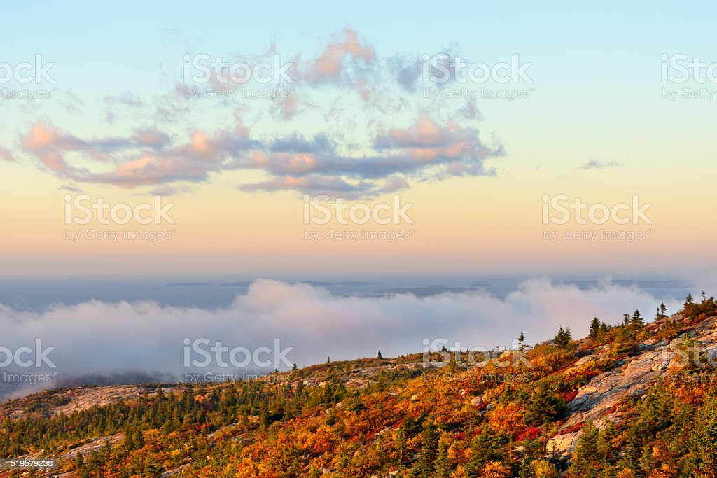 Mountain View of Trees in Autumn with Fog at Sunrise stock photo