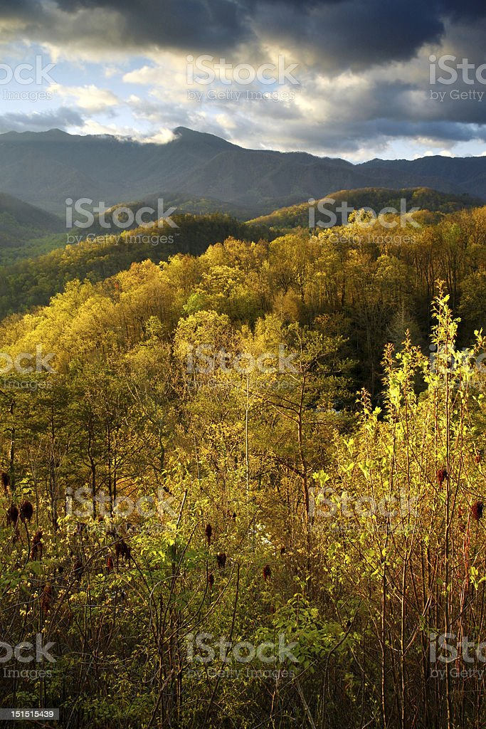 mountain vista royalty-free stock photo