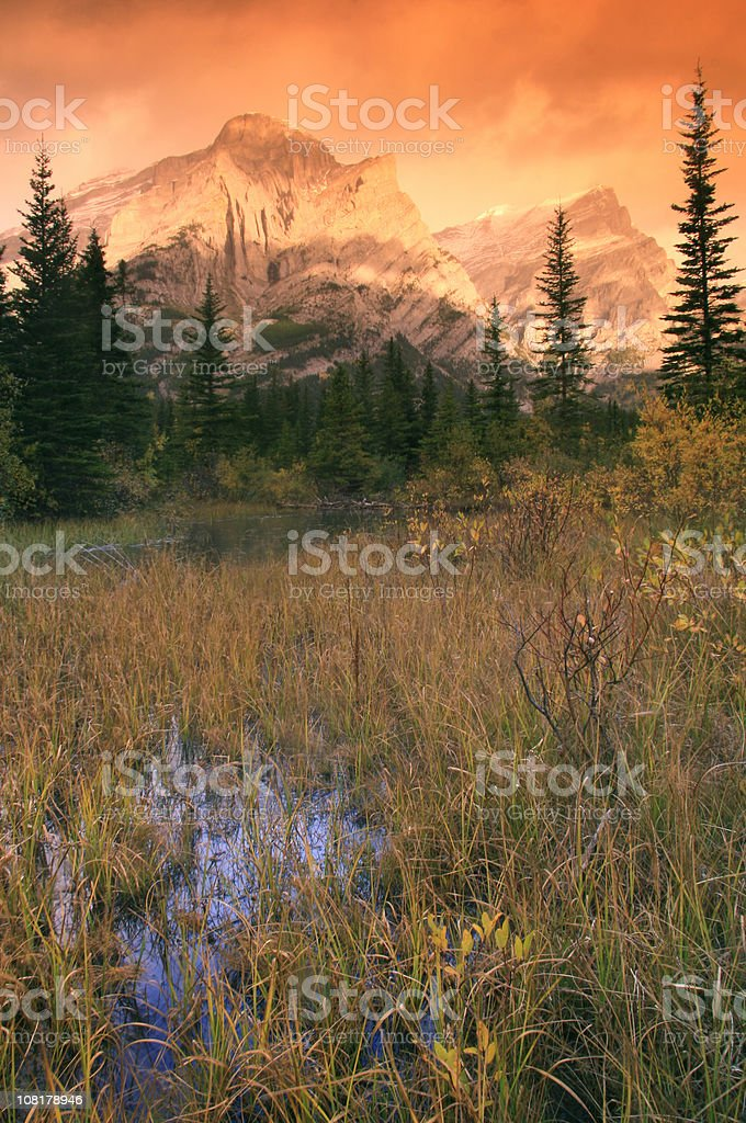 Mountain Wilderness and Wetlands stock photo
