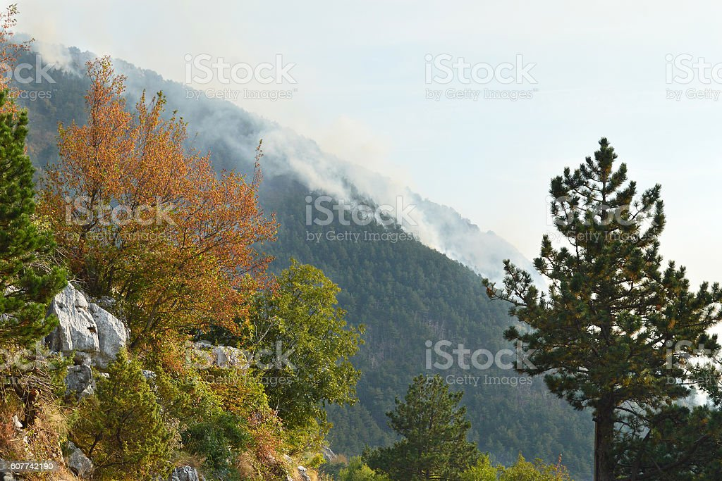 Mountain wildfire stock photo