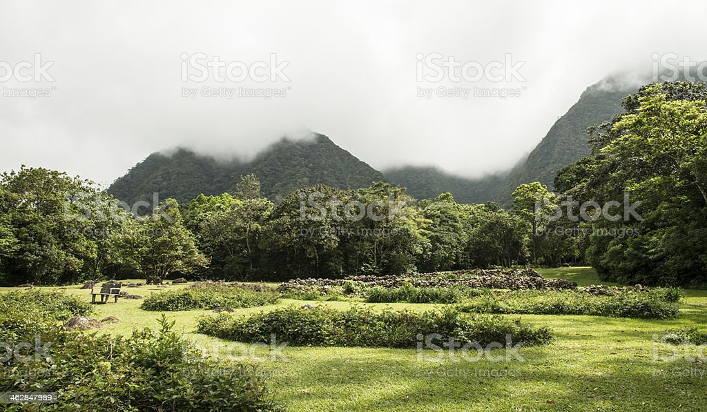 mountain with green plants and clouds in the sky stock photo