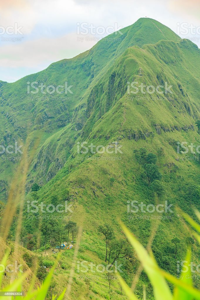 Mountain with mist in foggy weather in national park. stock photo