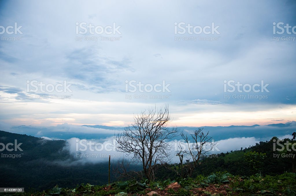 Mountain with mist stock photo