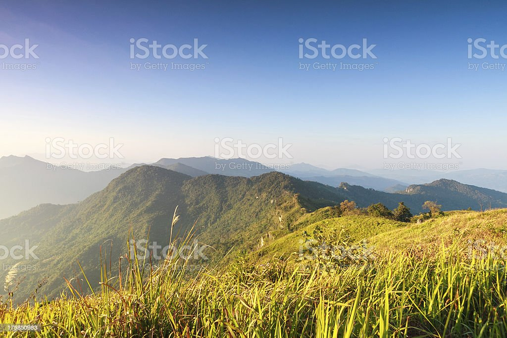 mountain with Phuchifa northeast chiangrai thailand royalty-free stock photo