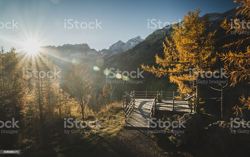 Mountain with view point and larch trees stock photo