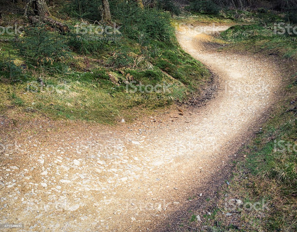 Mountainbike berms curving through forest undergrowth stock photo