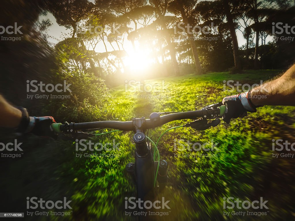 Mountainbike ride in the forest stock photo