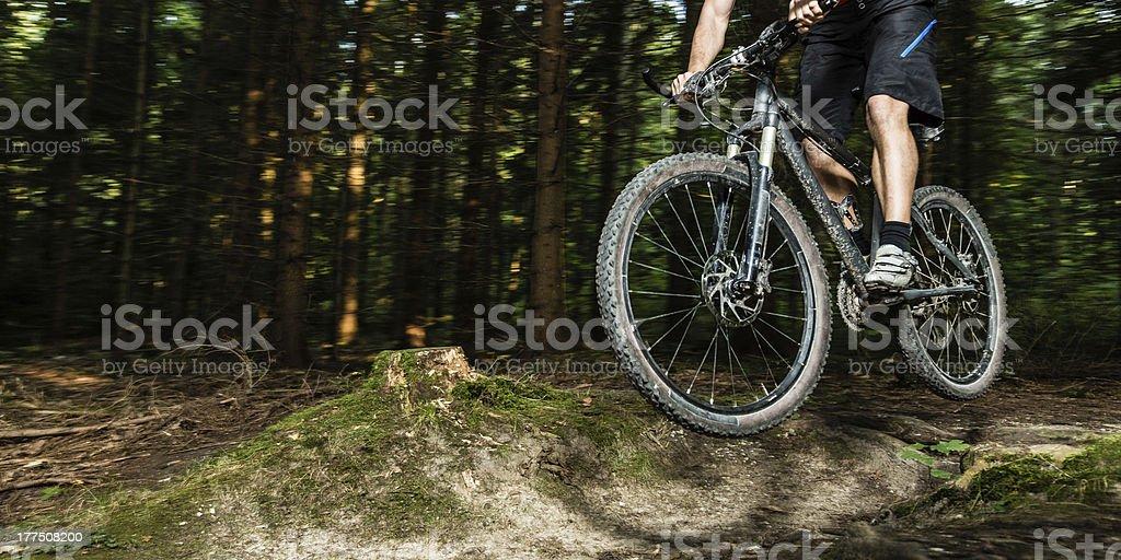 mountainbiker in a jump stock photo