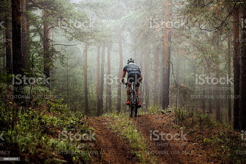 mountainbiker rides a bicycle along a forest trail stock photo