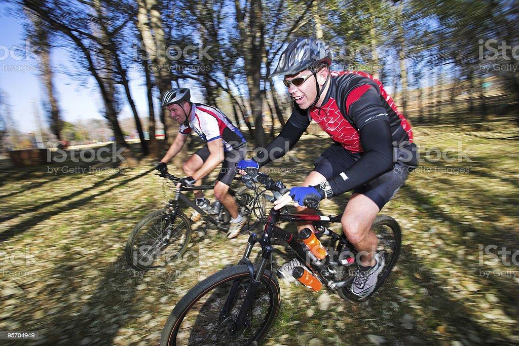 Mountainbikers royalty-free stock photo