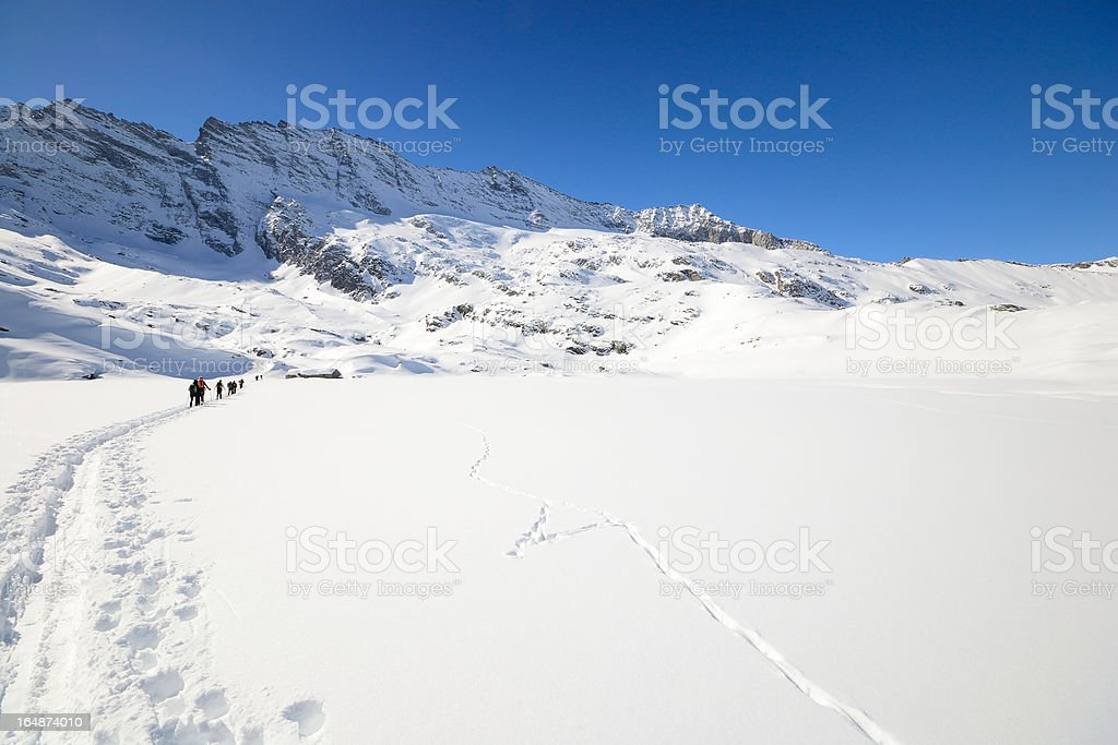 Mountaineering in winter royalty-free stock photo