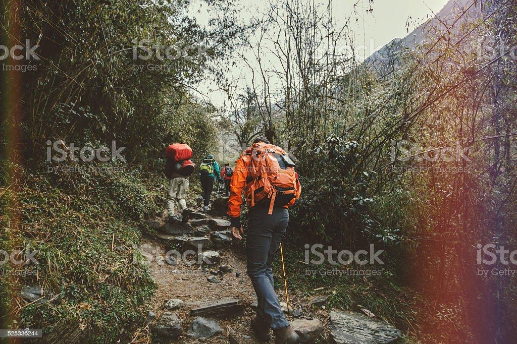 Mountaing trekkers stock photo