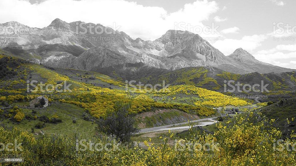 Mountainous Landscape -  Paisaje Monta?oso stock photo
