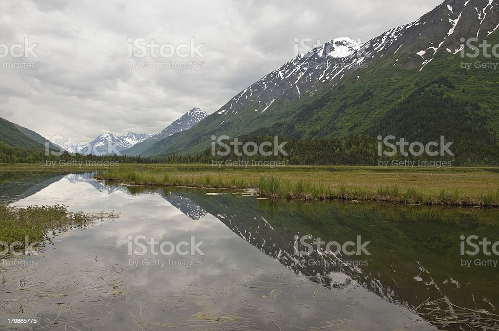 Mountains and Clouds Reflecting in Kenai Marsh stock photo