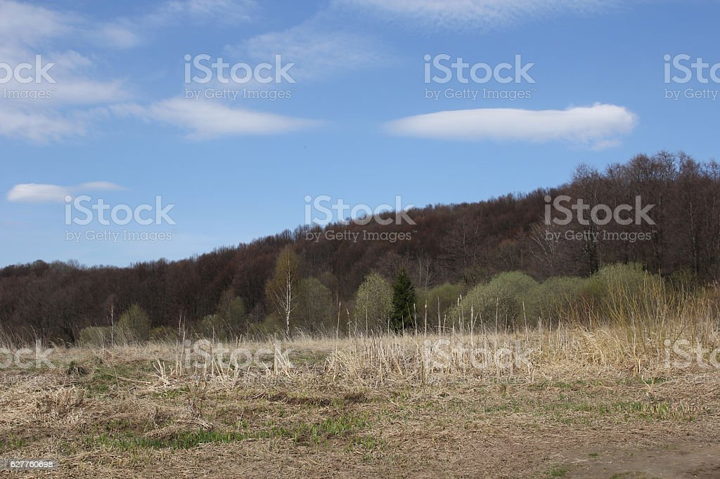 Mountains and field in the early spring stock photo