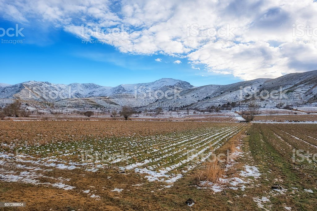 Mountains and fields covered with snow stock photo