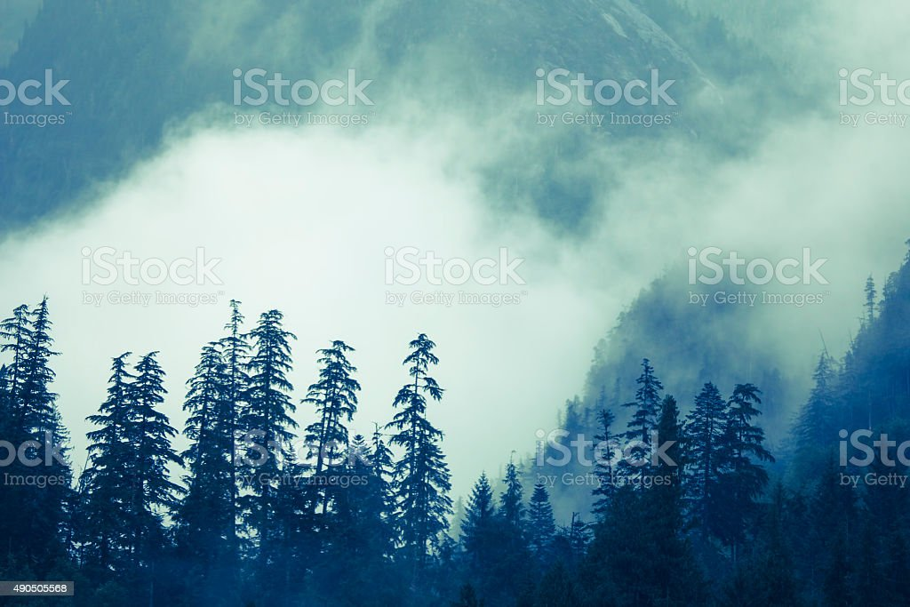 Mountains and Fog stock photo