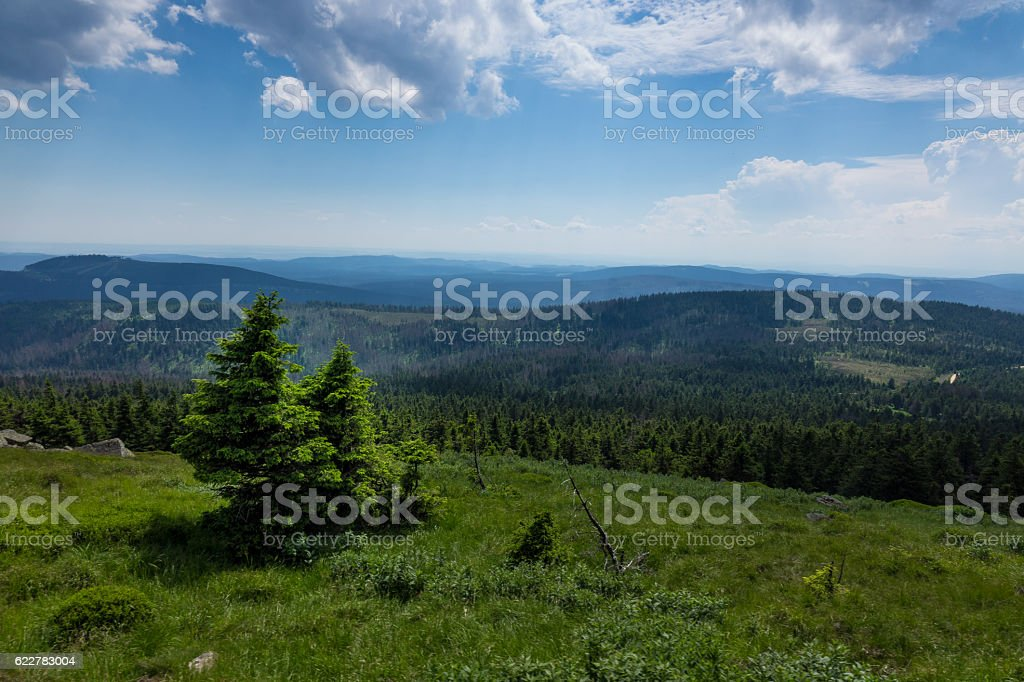 Mountains and forest of  Harz in the sunlight , Germany stock photo