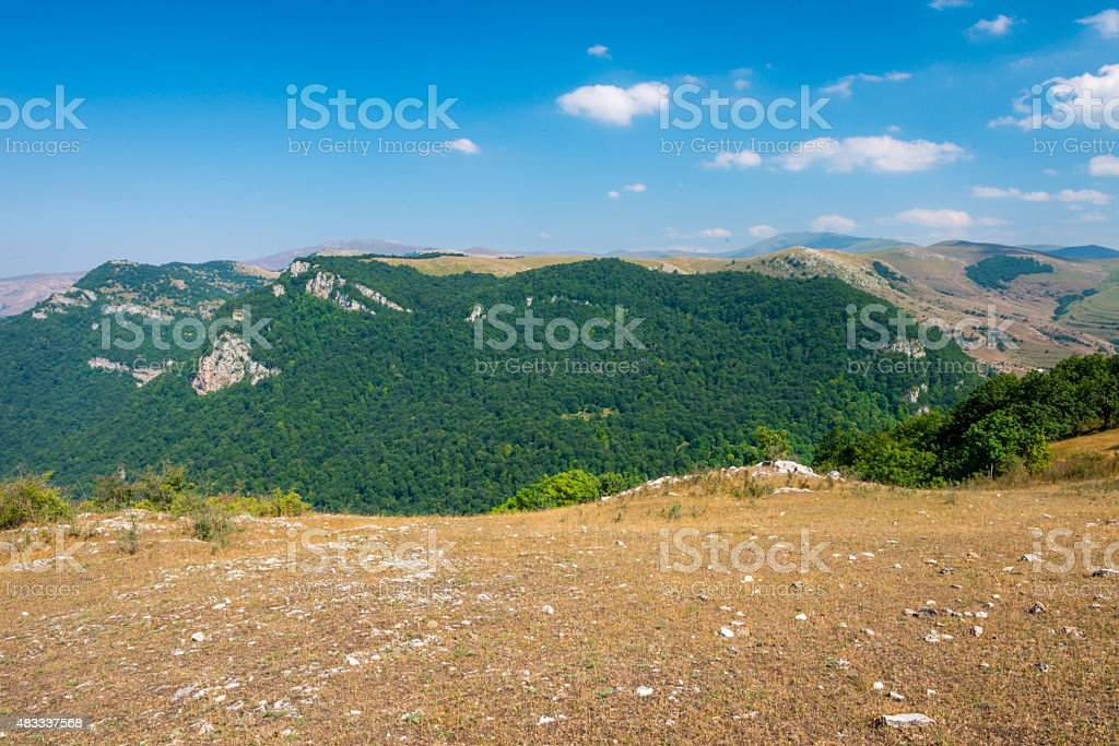 Mountains and forest stock photo