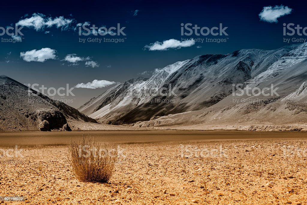 Mountains and green vegetation, Chagor tso - Lake ,Ladakh,India stock photo