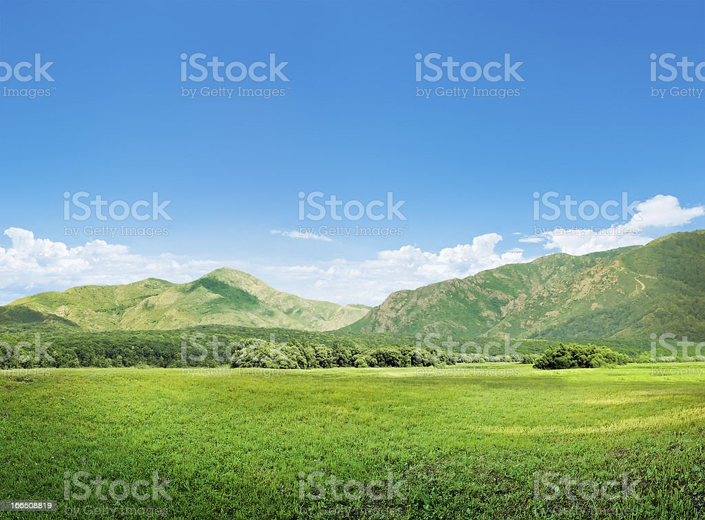 Mountains and meadow royalty-free stock photo