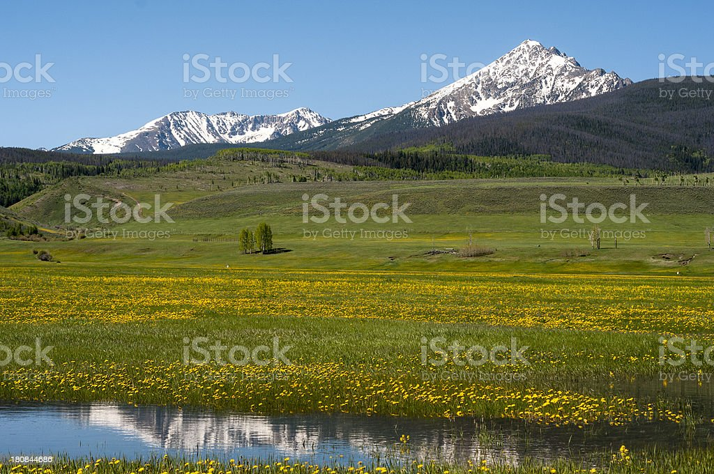 Mountains and Pasture stock photo