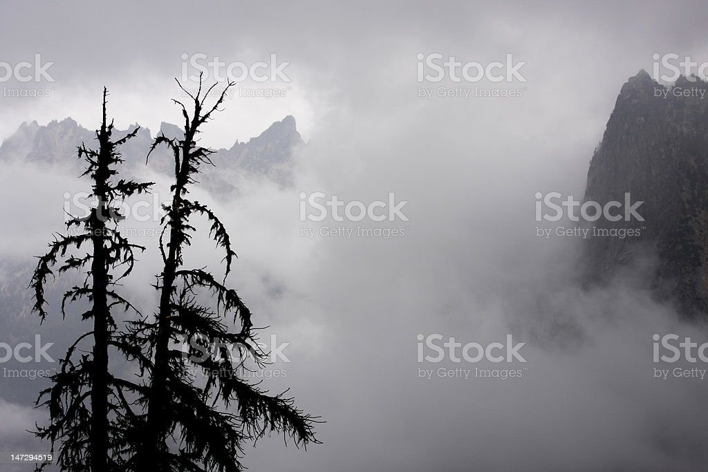 Mountains and Trees in Fog royalty-free stock photo