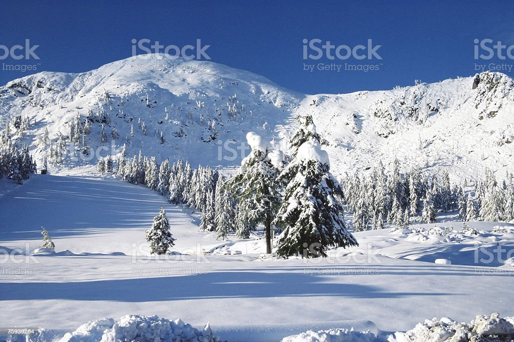 Mountains covered in snow royalty-free stock photo