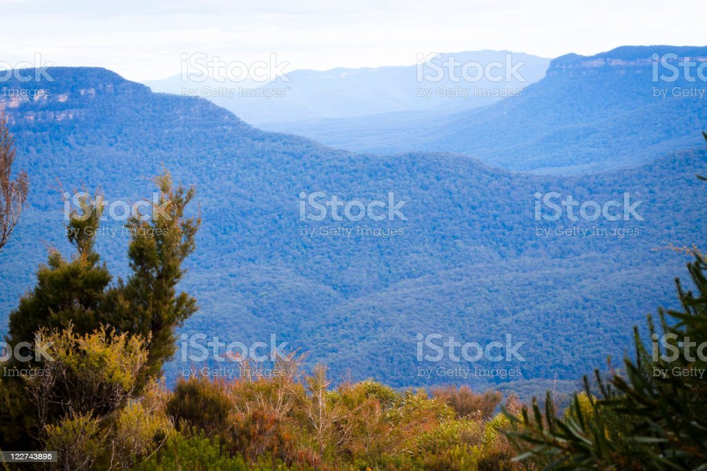 Mountains covered with blue haze vaporising from eucalyptus trees royalty-free stock photo