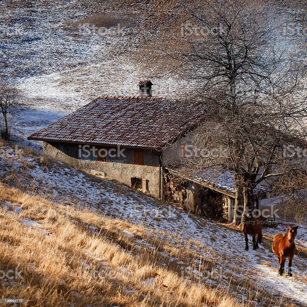 Mountains Farmhouse  in Winter stock photo