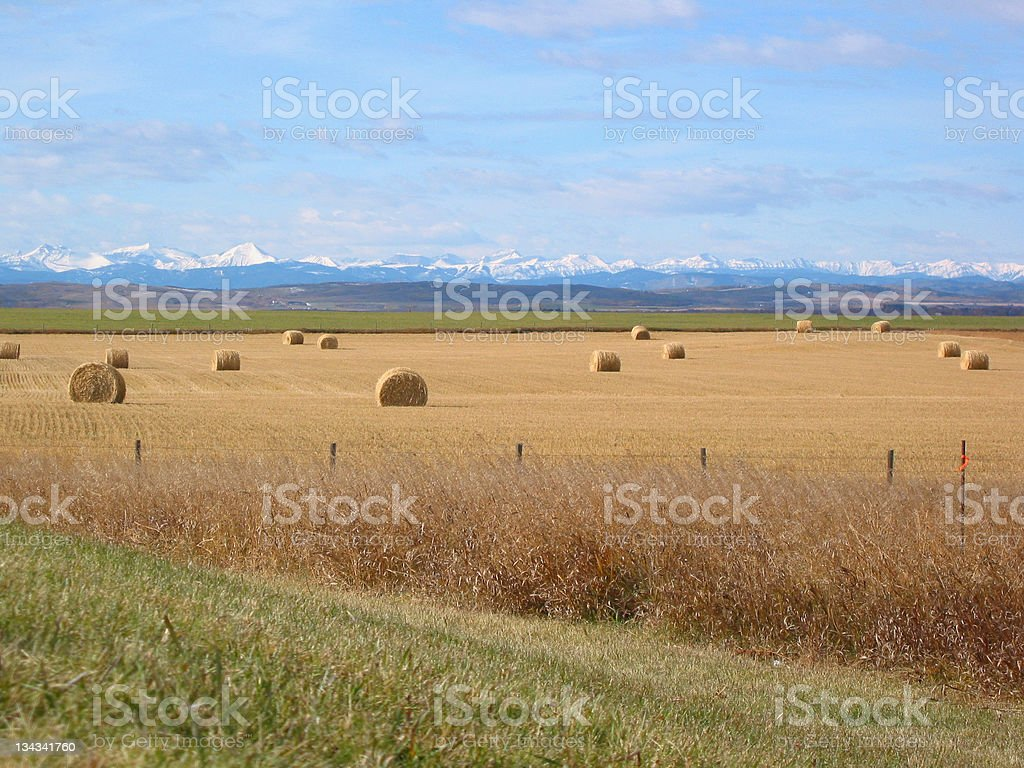 Mountains, Foothills and Bales royalty-free stock photo
