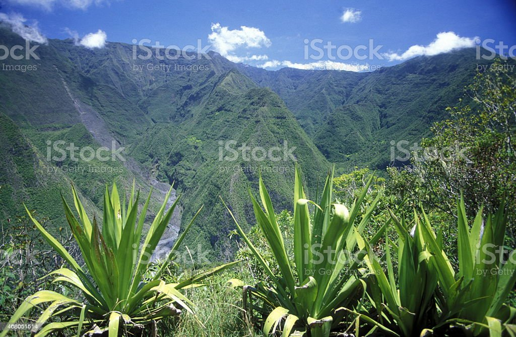 Mountains in Africa France La Reunion stock photo
