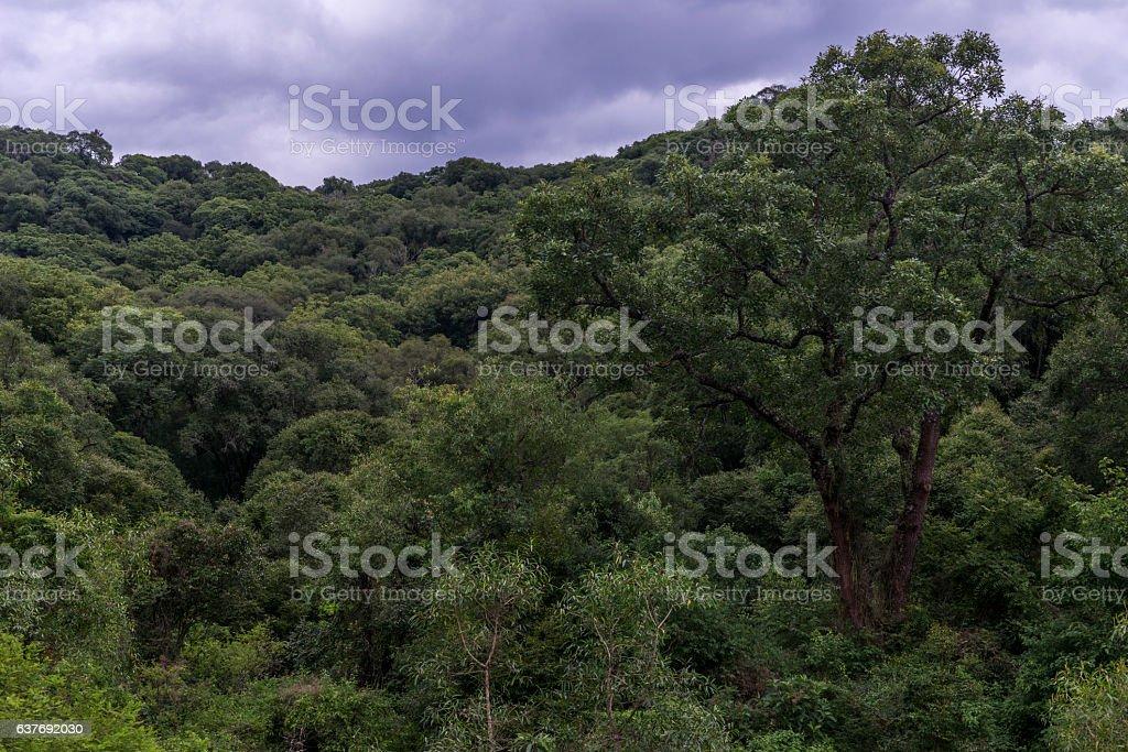 mountains in latin america stock photo