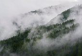 Mountains in the Fog