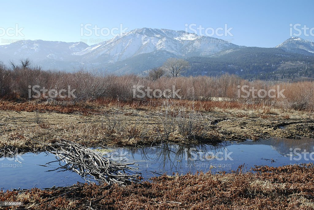 Mountains in the Late Afternoon royalty-free stock photo